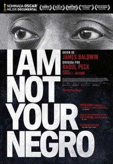 I AM NOT YOUR NEGRO Web