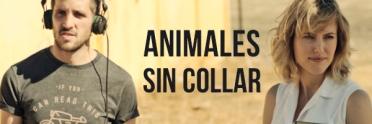 Animales sin collar -banner-