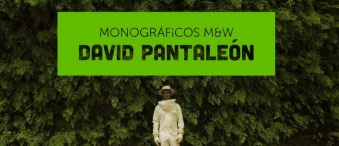 Monográfico David Pantaleón -M&W-