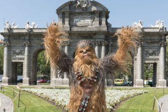 Chewbacca visita Madrid para presentar HAN SOLO UNA HISTORIA DE STAR WARS -may 2018- (1)